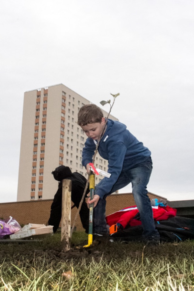 #Townhead_Orchard_Planting-9