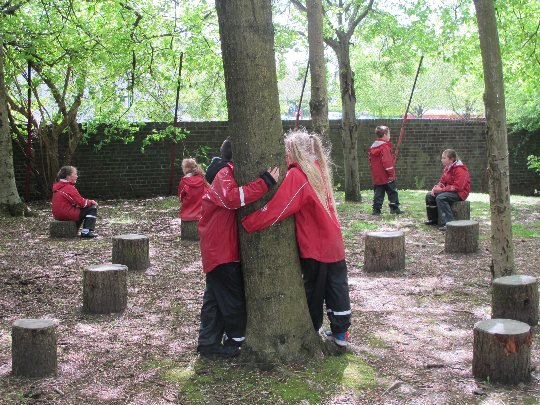 Hugging their Tree